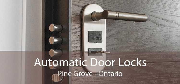 Automatic Door Locks Pine Grove - Ontario