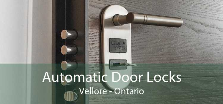 Automatic Door Locks Vellore - Ontario