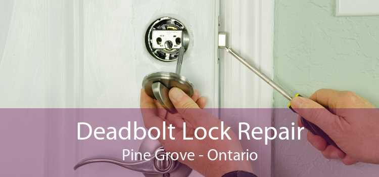 Deadbolt Lock Repair Pine Grove - Ontario