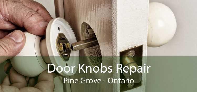 Door Knobs Repair Pine Grove - Ontario