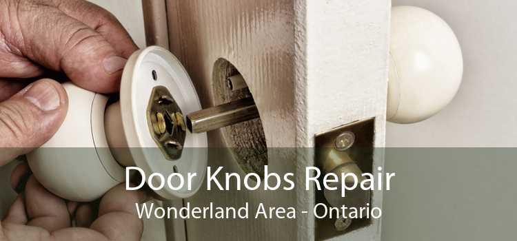 Door Knobs Repair Wonderland Area - Ontario