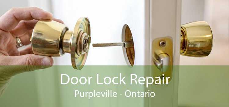Door Lock Repair Purpleville - Ontario