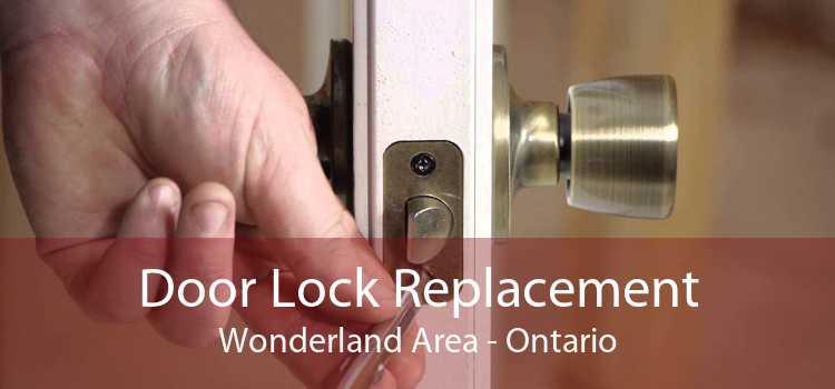 Door Lock Replacement Wonderland Area - Ontario