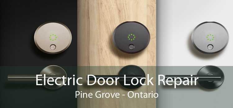 Electric Door Lock Repair Pine Grove - Ontario