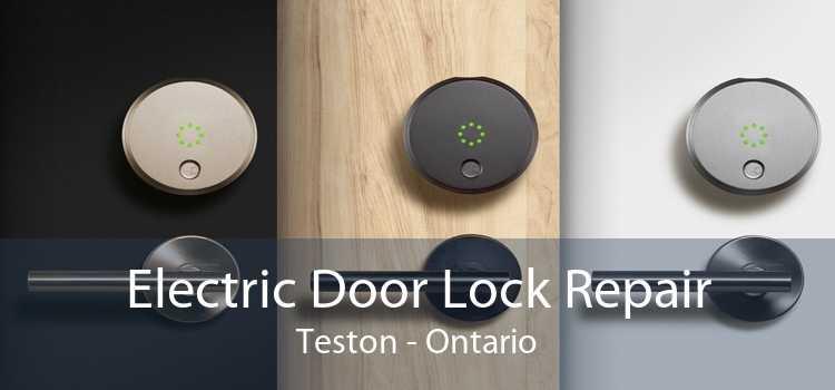 Electric Door Lock Repair Teston - Ontario