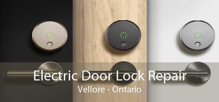 Electric Door Lock Repair Vellore - Ontario