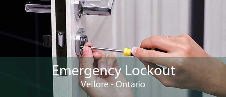 Emergency Lockout Vellore - Ontario