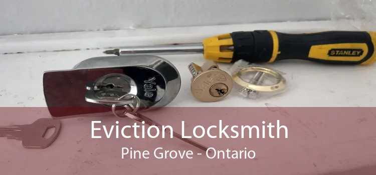 Eviction Locksmith Pine Grove - Ontario