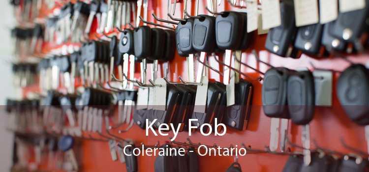 Key Fob Coleraine - Ontario
