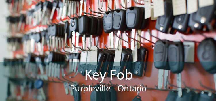 Key Fob Purpleville - Ontario