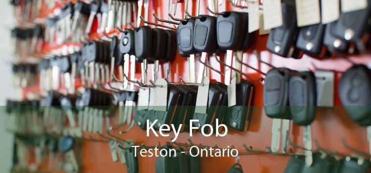 Key Fob Teston - Ontario