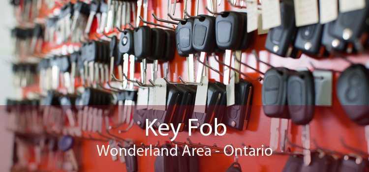 Key Fob Wonderland Area - Ontario
