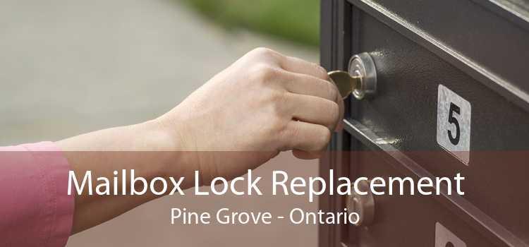 Mailbox Lock Replacement Pine Grove - Ontario