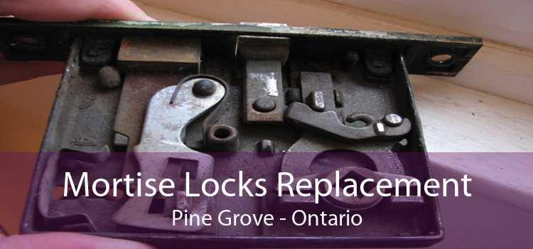 Mortise Locks Replacement Pine Grove - Ontario
