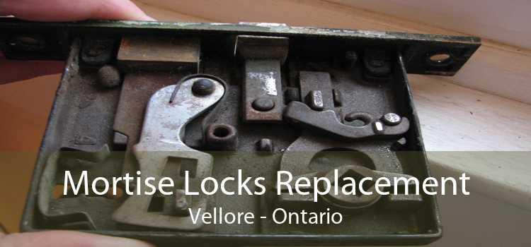 Mortise Locks Replacement Vellore - Ontario