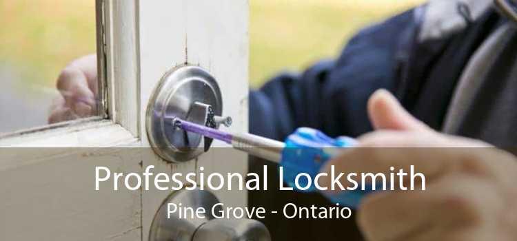 Professional Locksmith Pine Grove - Ontario