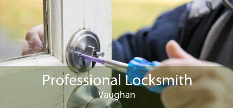 Professional Locksmith Vaughan