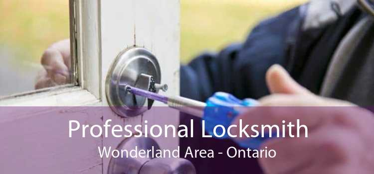 Professional Locksmith Wonderland Area - Ontario